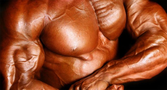Testosteron vorher nachher