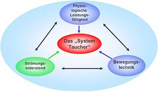 Das System Taucher